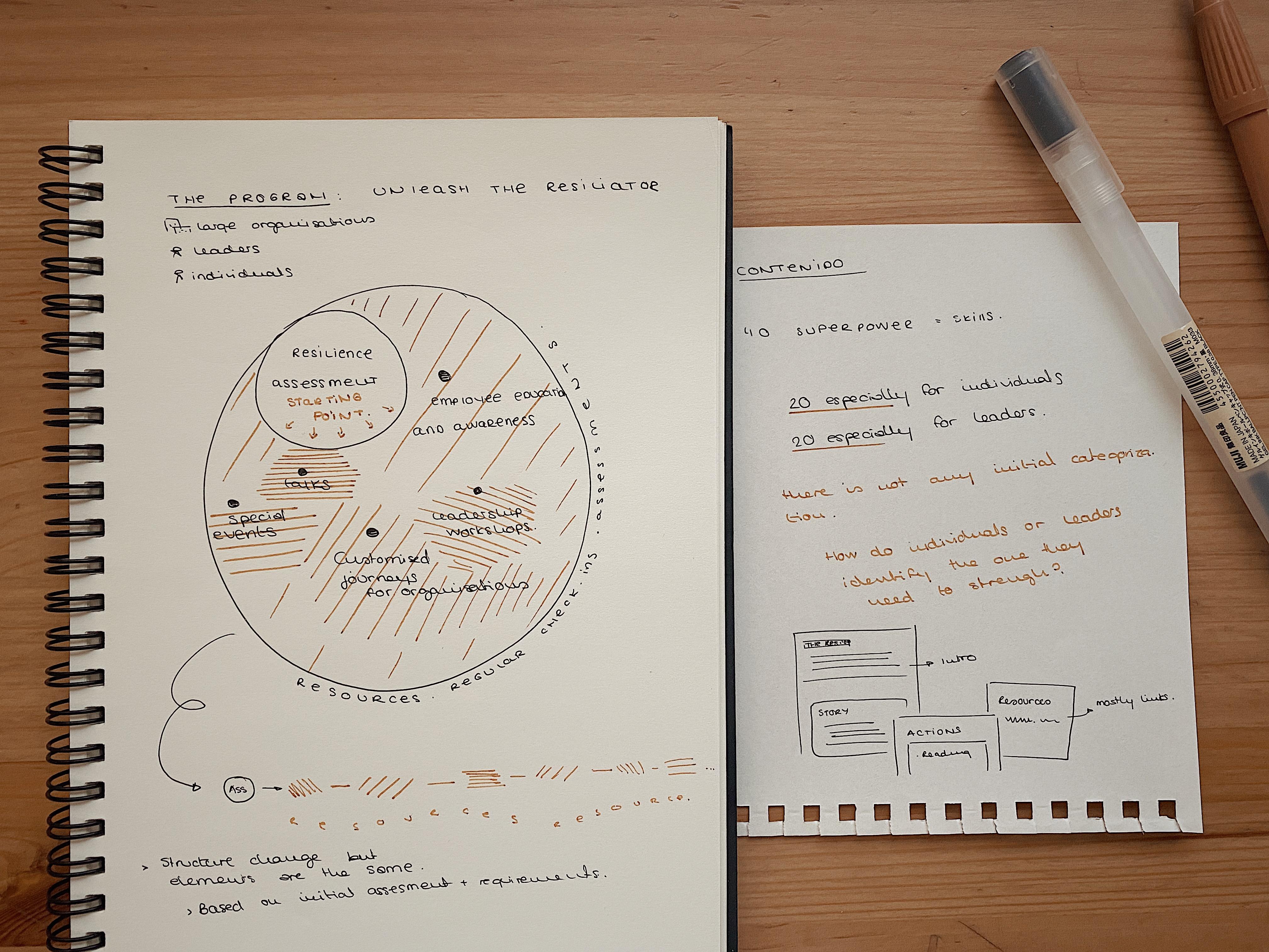 Notes programs